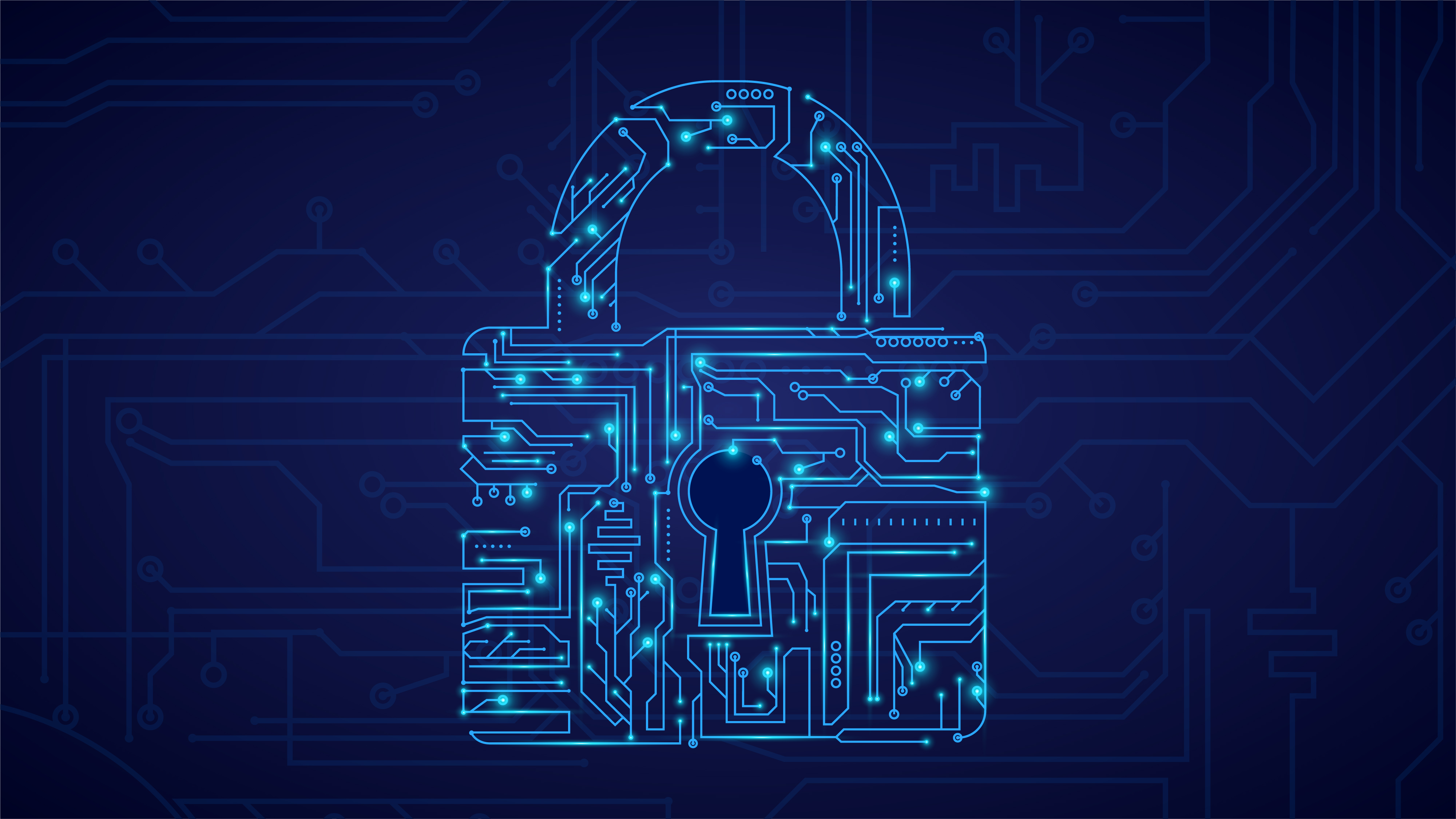 Data risk: a growing risk for companies and great opportunity for hackers