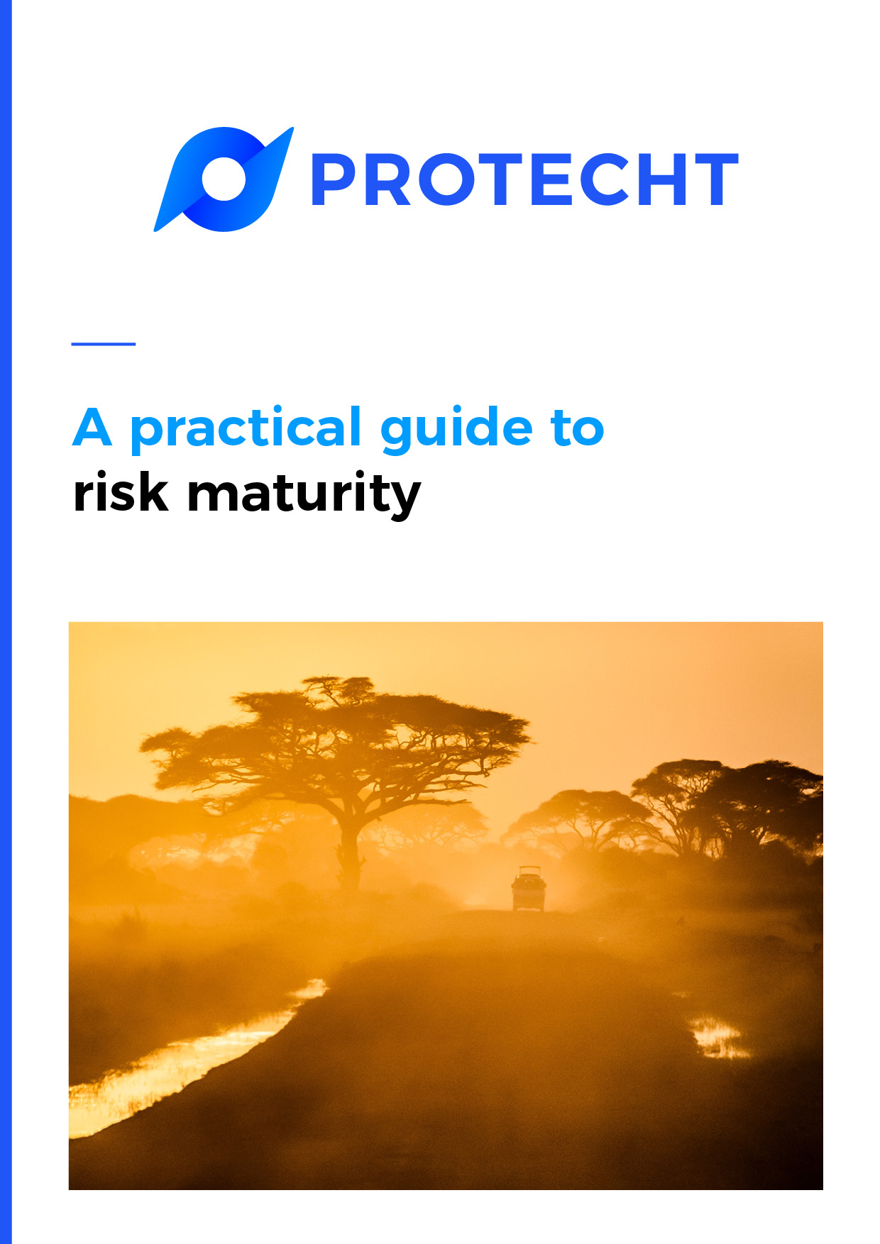 A Practical Guide to Risk Maturity